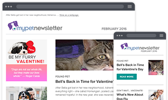 A Pet Parenting Newsletter